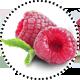 Himbeer_RaspberryKeton