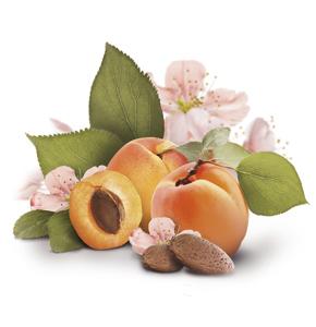Aprikose_Mandel-Inhaltsstoffe-amazon