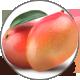 Mango_Mangiferam9IkU8D6fgmgz