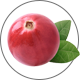 Cranberry_Kranbeere550821fe8fbf9