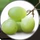 Traubenkernoel_GrapeSeedOil